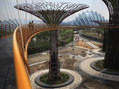 A 128-meter long walkway will connect two of the tallest trees and give visitors a breathtaking aerial view of Singapore.