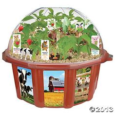 Farmer's Garden™ Terrarium @ Oriental Trading ($25; IN-59/41)