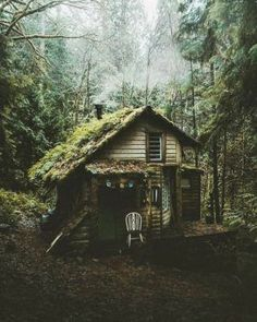 Dark Green Aesthetic, Witch Aesthetic, Nature Aesthetic, Aesthetic Images, Aesthetic Vintage, Aesthetic Photo, Nature Witch, Slytherin Aesthetic, Cottage In The Woods