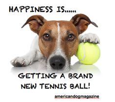 Happiness is...... getting a brand new tennis ball!