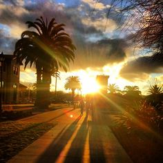 Sunsets over Santa Clara University are too gorgeous. Photo credit goes to Instagram user, @imanadrum.