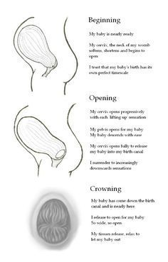 birth physiology visualisations and affirmations Pregnancy Affirmations, Birth Affirmations, Pregnancy Labor, Pregnancy Health, Pregnancy Facts, Birth Doula, Baby Birth, Birth Quotes, Birth Pictures
