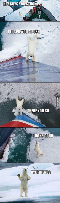 Kind polar bear