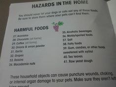 These are FOODS that are harmful to animals. Even a small amount of grapes are deadly for them.