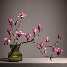 Ikebana Flower Arrangement, Ikebana Arrangements, Flower Vases, Floral Arrangements, Flower Room, Flower Art, Exotic Flowers, Beautiful Flowers, Arreglos Ikebana