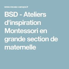 BSD - Ateliers d'inspiration Montessori en grande section de maternelle
