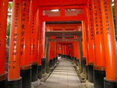 เที่ยวเกียวโต ฟูชิมิอินาริ