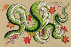 Snake O'Donnell