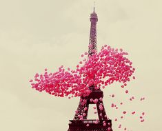 love: pink balloons, paris
