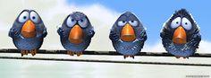Here Birdy, Birdy, Birdy!