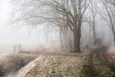 Winter in Drunen by Gerhard111