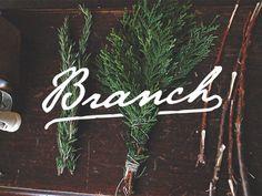 Jorgen Grotdal - Branch