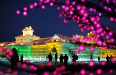 Let the light LED the way: Visitors take photo of the night scenery of the Ice and Snow World during the 29th Harbin International Ice and Snow Festival