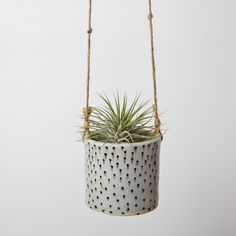 What a cute idea for air plants: Hanging Ceramic Polka Dot Planter from FlyAway BlueJay