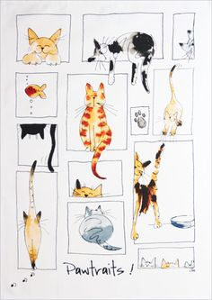 New cats illustration watercolor kitty ideas Watercolor Cat, Watercolor Paintings, Watercolors, Cat Quilt, Happy Paintings, Art Graphique, Cat Drawing, Cats And Kittens, Big Cats