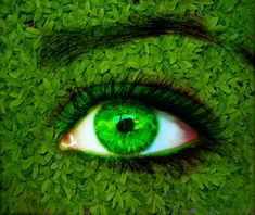 Open your eyes. Breathe in nature and forget about the stress of life and social norms. Open your true eyes💚💚💚 . Pretty Eyes, Beautiful Eyes, Green Nature Wallpaper, Mean Green, Best Natural Skin Care, Going Natural, World Of Color, Eye Make Up, Shades Of Green