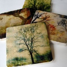 Stone Coasters - Rooted in Time set of 4    The Rooted in Time stone coasters are made using smooth and clean 4x4 inch tumbled marble tiles. Each