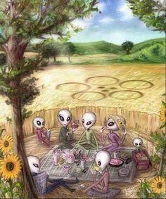 Os Crop Circles: Seriam Mesmo de Origem Extraterrestre?