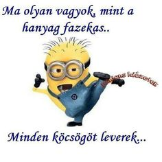 Prappáns Funny Happy, Funny Photos, Sarcasm, Minions, Favorite Quotes, Funny Jokes, Quotations, Haha, Have Fun
