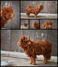 My favorite animals to felt are cows and this is my first Scottish Highland. Scottish Highland cattle are adorable and I have been planning the