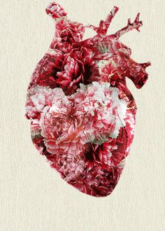 The best and most beautiful things in the world cannot be seen or even touched,they must be felt with the heart.Put your heart, mind, and soul into even your smallest acts.This is the secret of success. Anatomical Heart, Anatomy Art, Human Anatomy, Poster S, Jolie Photo, Heart Art, Artsy Fartsy, Iphone Wallpaper, Street Art