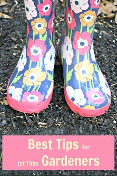 Best tips for first time gardeners