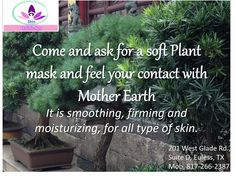 Ask for our Soft Plant Mask in SKIN HOLISTIC SPA in Euless, TX.
