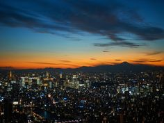 Tokyo at Sunset, Japan Image Source / SuperStock Free Screensavers, My Favourite Subject, Japan Image, Image Sources, Out Of This World, Free Photos, Tokyo, Asia, Weather