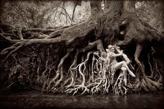 OMG *anything* by Kirsty Mitchell is super inspiring...