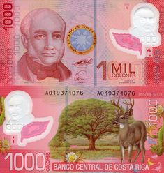 Costa Rica Colones banknotes for sale. Dealer of quality collectible world banknotes, fun notes and banknote accessories serving collectors around the world. Over 5000 world banknotes for sale listed with scans and images online. World Coins, How To Speak Spanish, Central America, History, Cool Stuff, Florida Plants, Bank Deposit, Flora, Joker