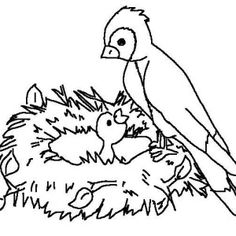Mother of Bird Feeding Her Baby Coloring Page