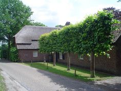 Berkt bij Veldhoven - monumentale boerderij de Leeuwenhof