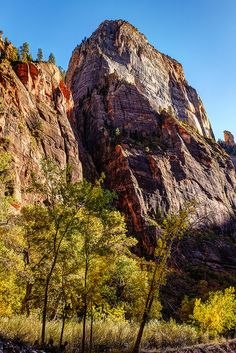 https://flic.kr/p/ApkCL5 | Great White Throne | Great White Throne Zion National Park Springdale, Utah