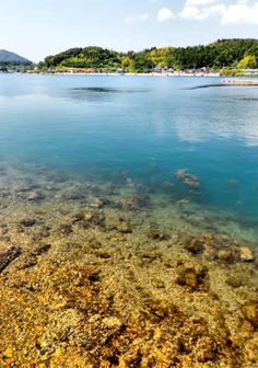 The clear waters surrounding Dogo are prefect for snorkelling and scuba diving, Oki Islands