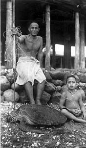 American Samoan man and young boy with captured sea turtle. 1940. Wayne A. Forde Collection