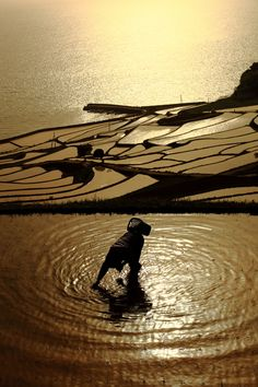 Rice planting at Doya terraced rice paddies in Fukushima, Japan