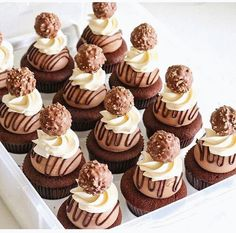 These Baileys Chocolate Cupcakes are made with a moist chocolate cupcake, Baileys chocolate ganache filling and Baileys frosting! One of my favorite flavor combos – these cupcakes are delicious! Gourmet Cupcakes, Cupcake Flavors, Yummy Cupcakes, Cupcake Recipes, Baking Recipes, Dessert Recipes, Mini Cakes, Cupcake Cakes, Let Them Eat Cake