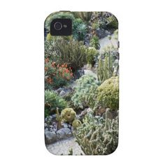 cacti case for the iPhone 4
