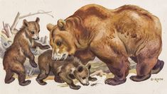 like a bear defending her cubs. Not by force, but with an always vigilant eye, so that the curious little ones can discover safely. The artist magically captured this moment. Mother Bears, Wildlife Paintings, Walk In The Woods, Cubs, Little Ones, Beast, Moose Art, Watercolor, Artist