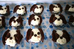 Charlie the Cavalier Cupcakes. Charlie the Cavalier Begs for Attention. Dog Cupcakes, Cute Cupcakes, Cupcake Cookies, Yummy Treats, Sweet Treats, Spaniel Dog, King Charles Spaniel, Decorated Cakes, Cavalier