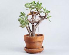 LA Artist Creates Tiny Treehouses for Houseplants — Design News