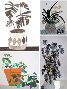 Indoor plants illustration by Jonas Wood