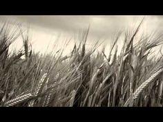 ▶ Qué sería del dolor, de Aurelio González Ovies - YouTube
