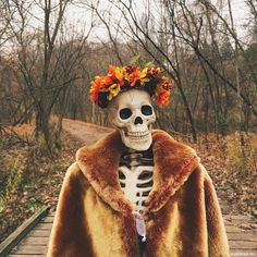 Winter Princess, Princess Art, Halloween Party Flyer, Halloween Art, Halloween Designs, Halloween Horror, Winter Hats, Fall Winter, Autumn