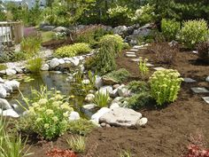 Gallery Water Feature (POND) Ideas For Your Back Yard-Rochester NY - Acorn Ponds & Waterfalls