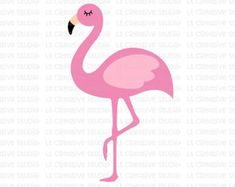 Check out our cricut files selection for the very best in unique or custom, handmade pieces from our digital shops. Mailbox Monogram, Monogram Fonts, Flamingo Craft, Flamingo Party, Silhouette Cameo Files, Feather Vector, Flower Svg, Canvas Patterns, Animais