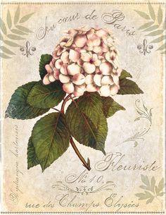 Flower Painting - Fleuriste De Paris by Marie-Elaine Cusson, 2013