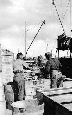 Old photograph of landing fish on the Orkney Islands, Scotland