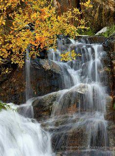 Seven Falls, Bear Canyon in the Catalina Mountains, Arizona; photo by Greg McCown