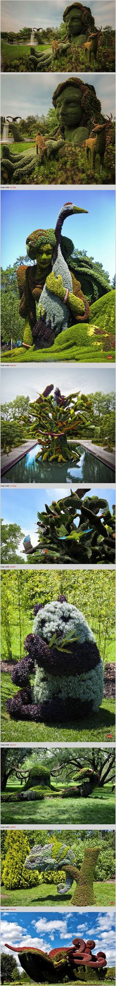 Amazing Plant Sculptures at the Montreal Mosaiculture Exhibition 2013  WOW!!!